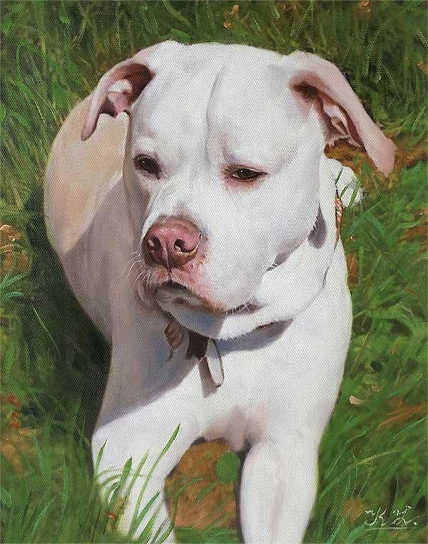 dog portraits on canvas
