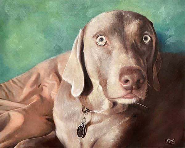 an oil painting of a chocolate lab on a green background