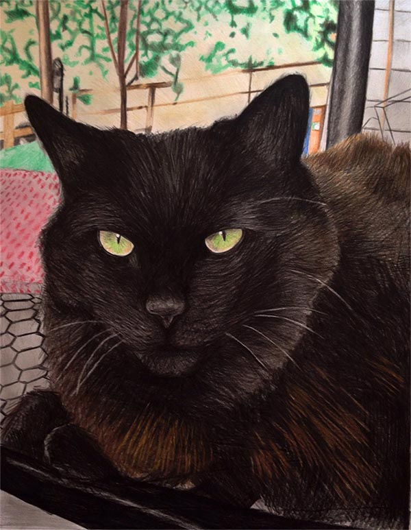an oil painting of a black cat