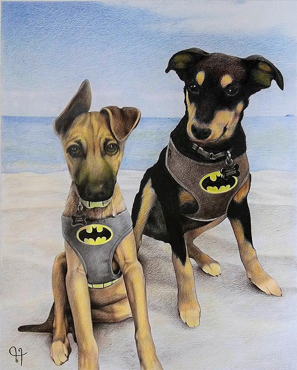 a color pencil painting of two dogs in a batman suit