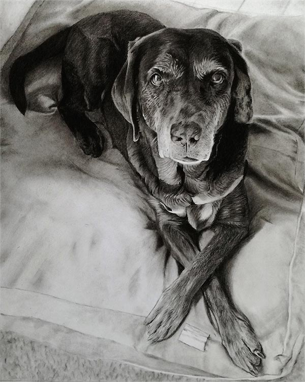 an oil painting of an old dog