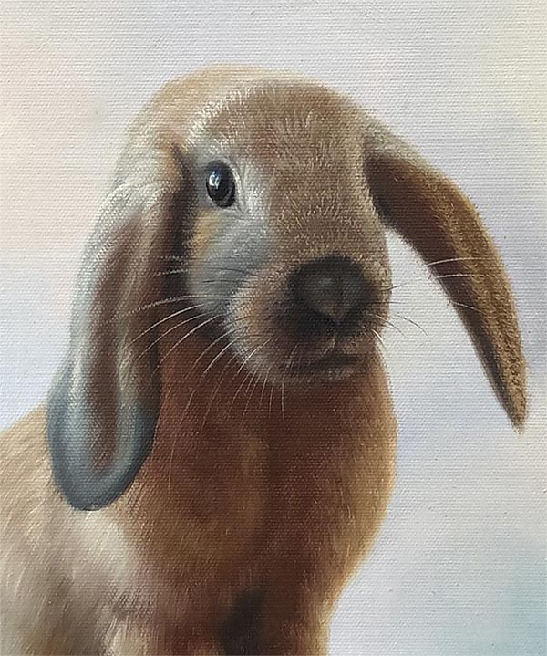 custom acrylic painting of brown rabbit