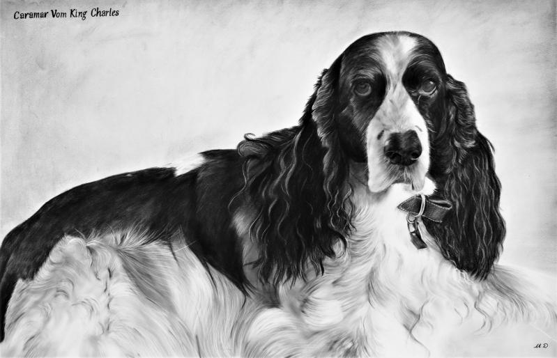 Custom handmade charcoal painting of a dog