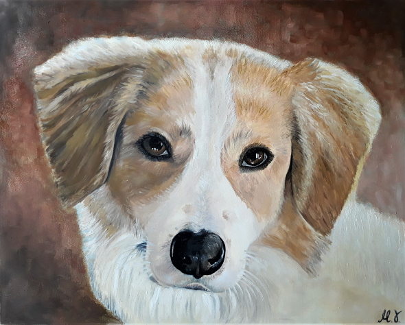 custom portrait of light brown and white dog on brown