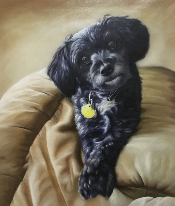 dog with yellow tag cute art