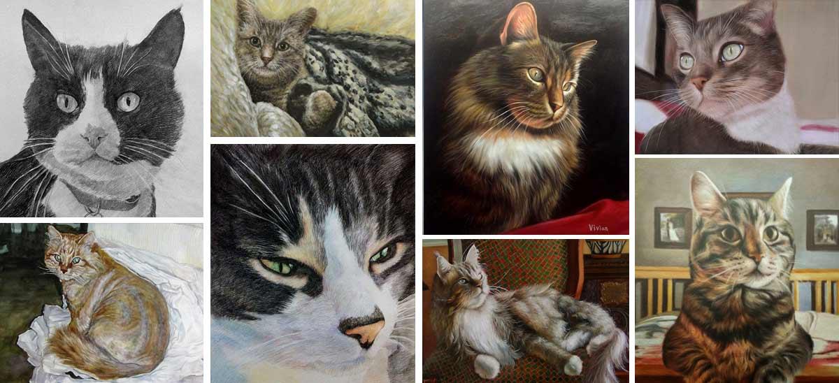 Kattenportretten