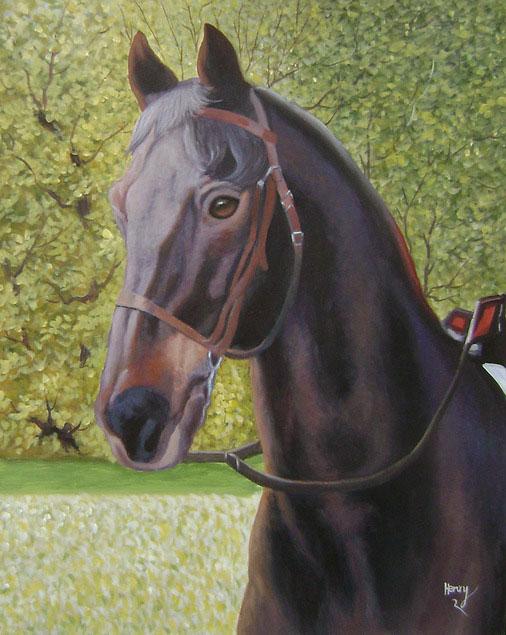 horse portrait in acrylic
