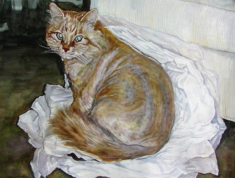custom watercolor painting of long haired orange cat