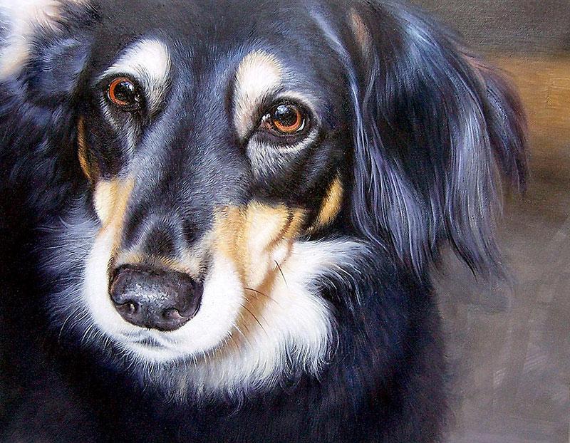ricordo primo cagnolino olio da fotografia