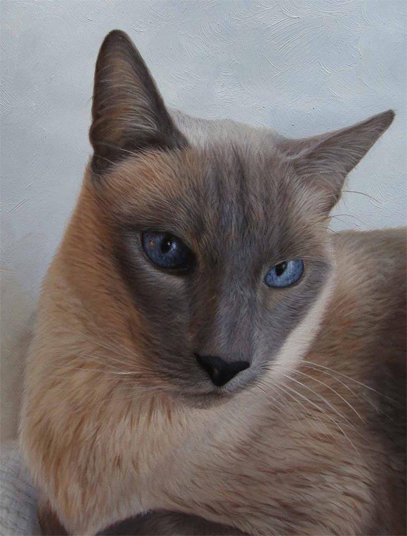 dipinto del gatto su tela