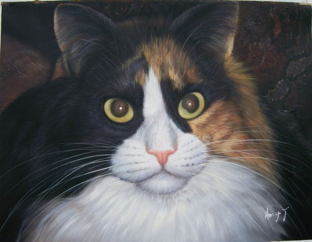close-up painting of cat from photo
