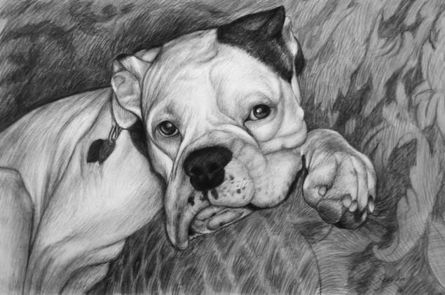 order artwork of a dog