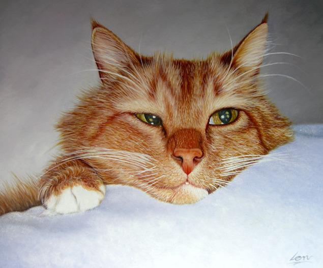 realistic painting of sleepy cat