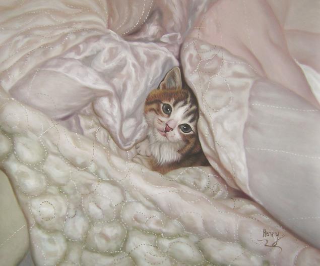 Portrait chat au lit
