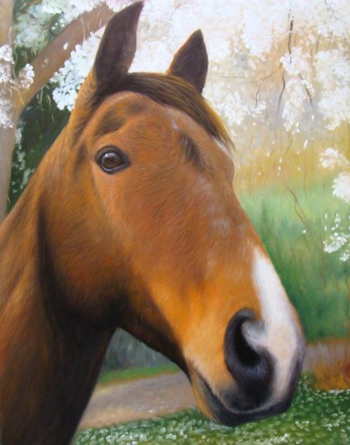 order a artwork of a horse