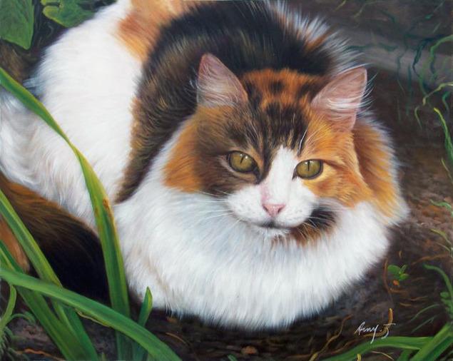 mon chat que la peinture à l'huile