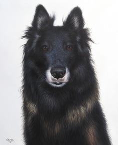 hondschilderijen