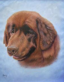 hond het schilderen