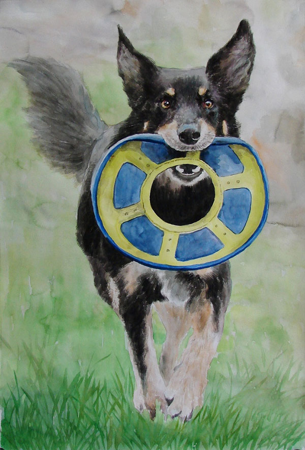 custom watercolor painting of dog holding frisbee