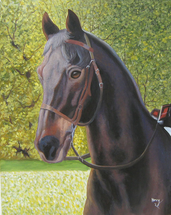 horse portrait in acrylic