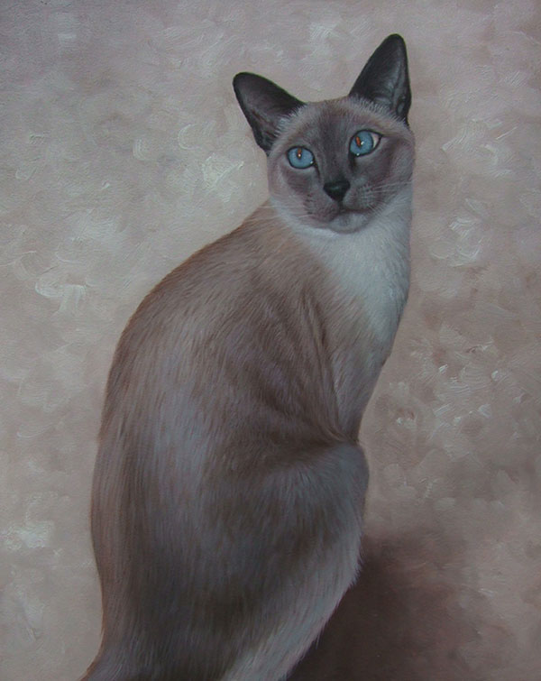 pet painting of grey cat local artist