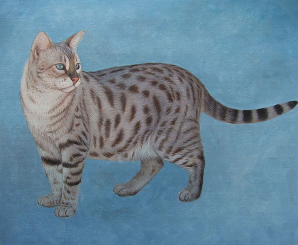 animal painting cat pet portrait artists near me