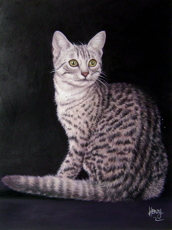 grey tiger cat photo to painting