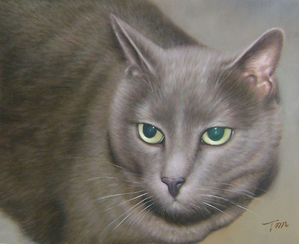 close up grey cat photo to painting