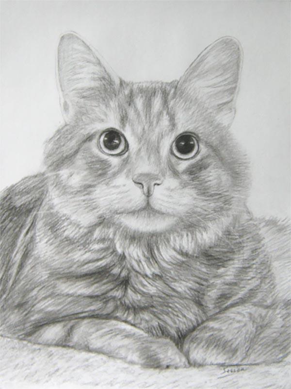 portraits de chats sur toile