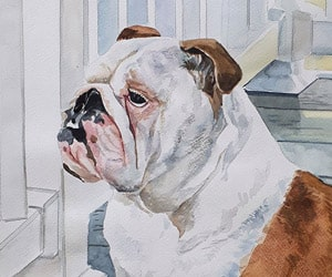 Custom Watercolor Pets Painting
