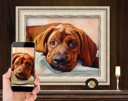 Pet portrait from photo pencil or paint of  pets or people